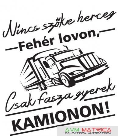 aabdb48850 Nincs szőke herceg - kamionon póló - AVM Matrica